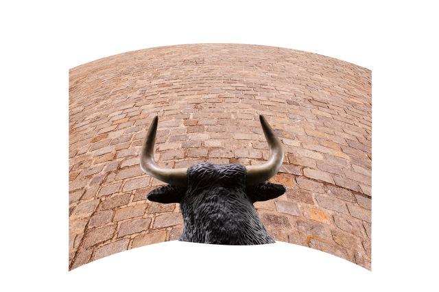 cobblestones_bull