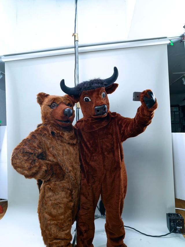 rt_bull_bear_11189