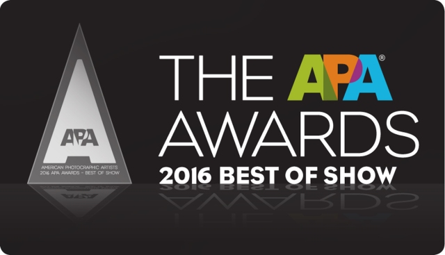 2016-apa_award_best_of_show-689x1200